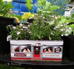 planter coke tin