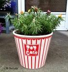 planter popcorn