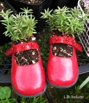 planter red shoes